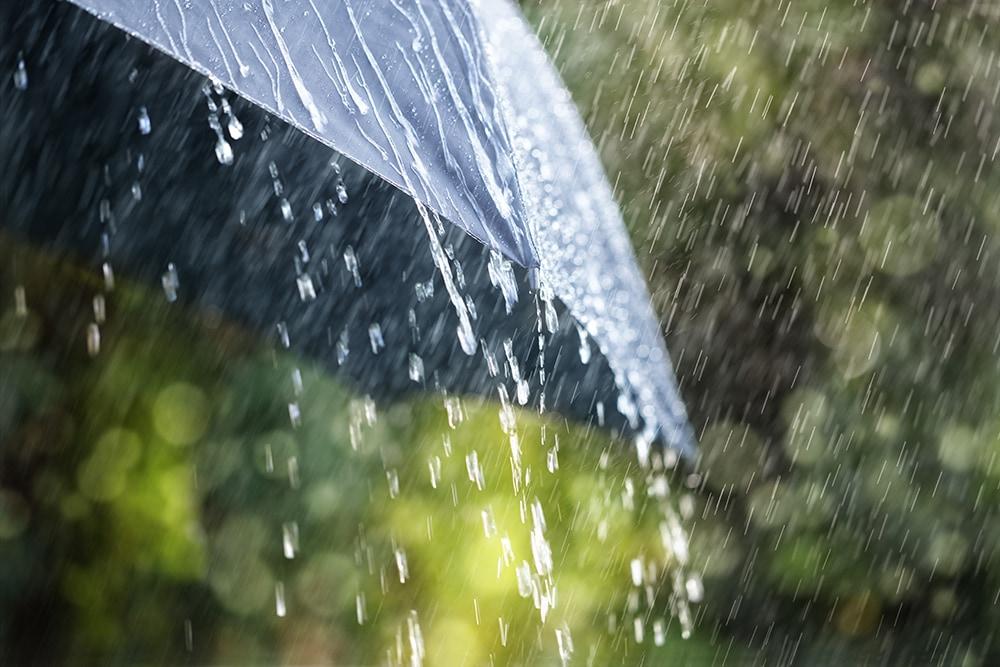 Regenschirm reinigen